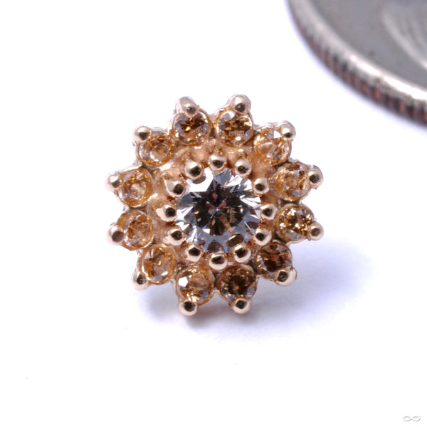 13 Stone Flower Press-fit End in Gold from LeRoi with Clear CZ & Champagne
