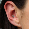 Conch Piercing with 2 Stone Marquise Press-fit End in Gold from LeRoi with Turquoise