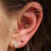 Conch piercing with Afghan Press-fit End in Gold from BVLA with Rainbow Moonstone