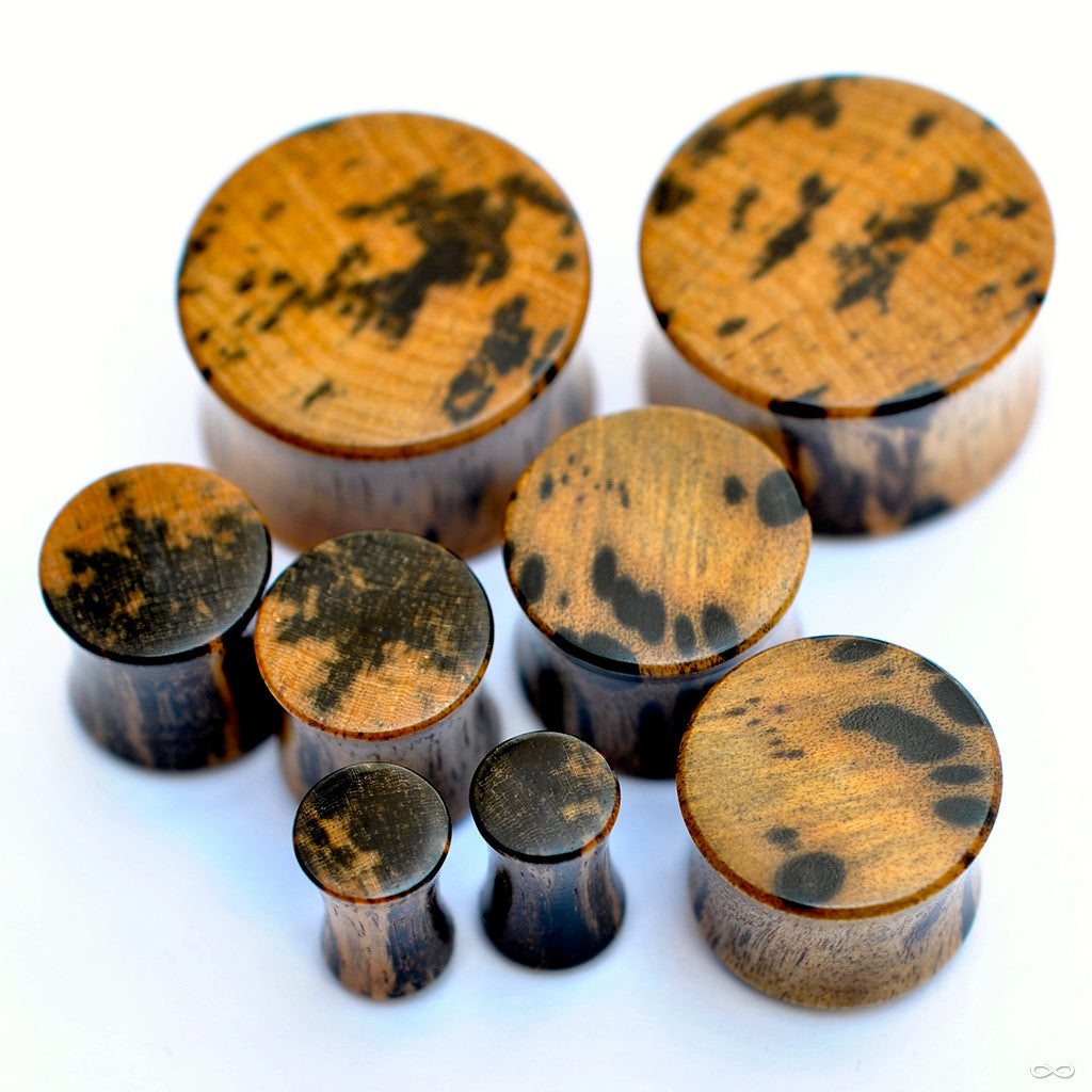 Dot Ebony Plugs from Bishop Organics