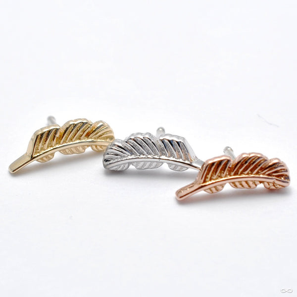 Feather Press-fit End in Gold from BVLA in Assorted Metals