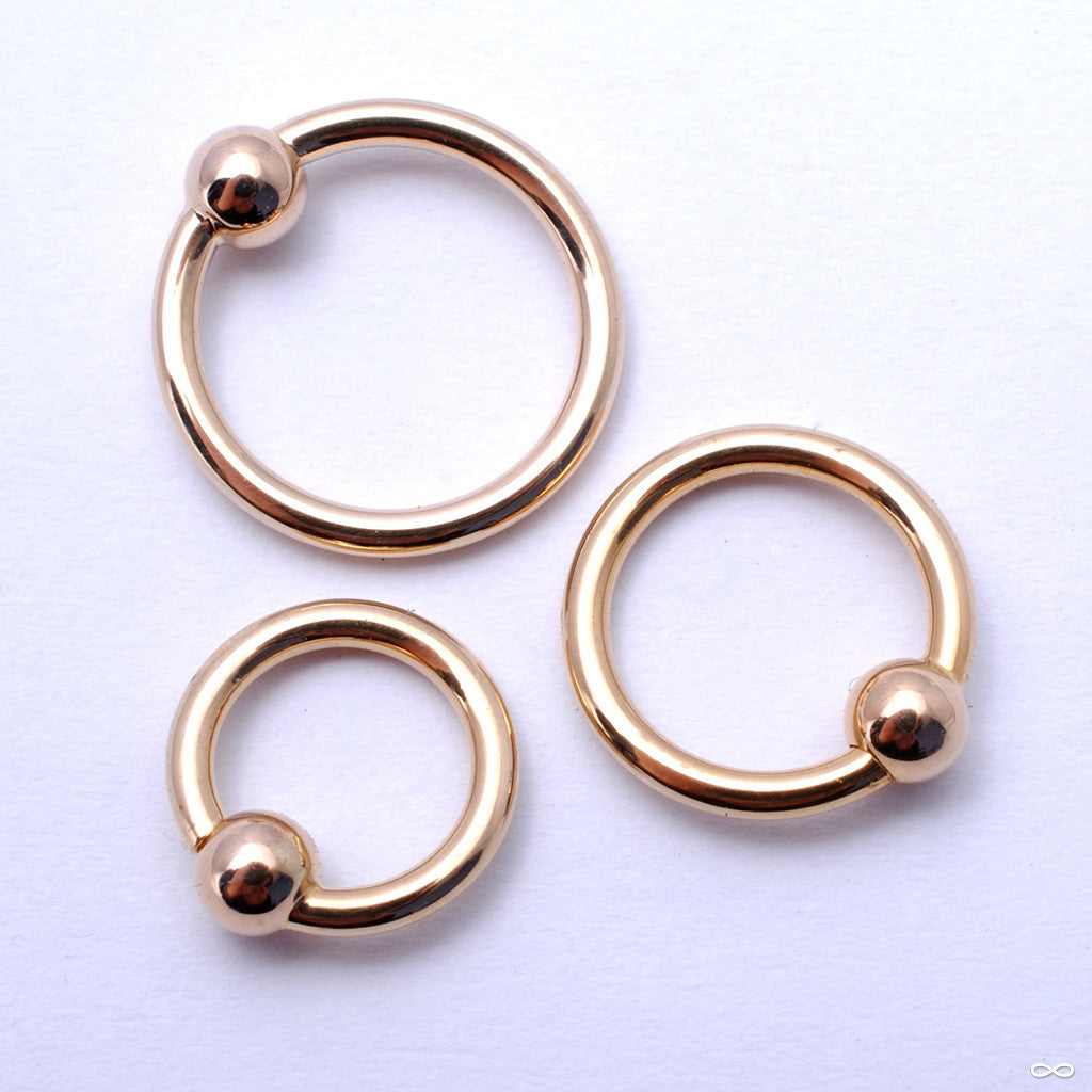 Fixed Bead Rings in Gold in 16g from Anatometal