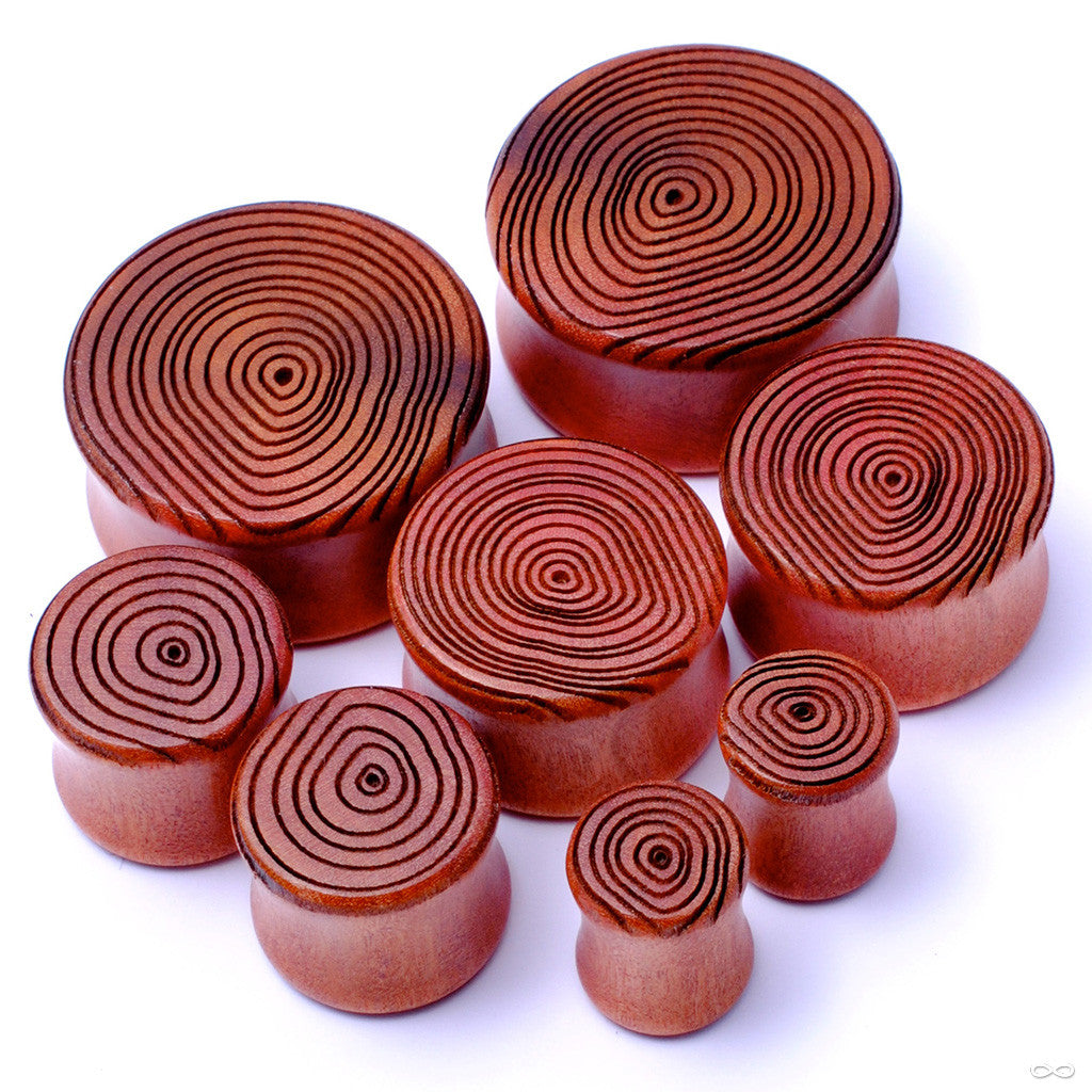 Growth Ring Plugs from Omerica Organic