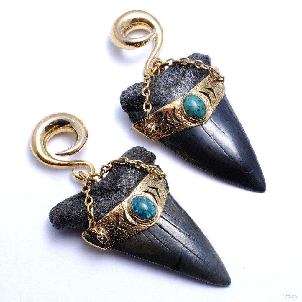 Megalodon Teeth with Turquoise from Diablo Organics