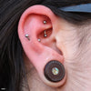 Rook piercing with Curved Press-fit Post in Titanium from NeoMetal