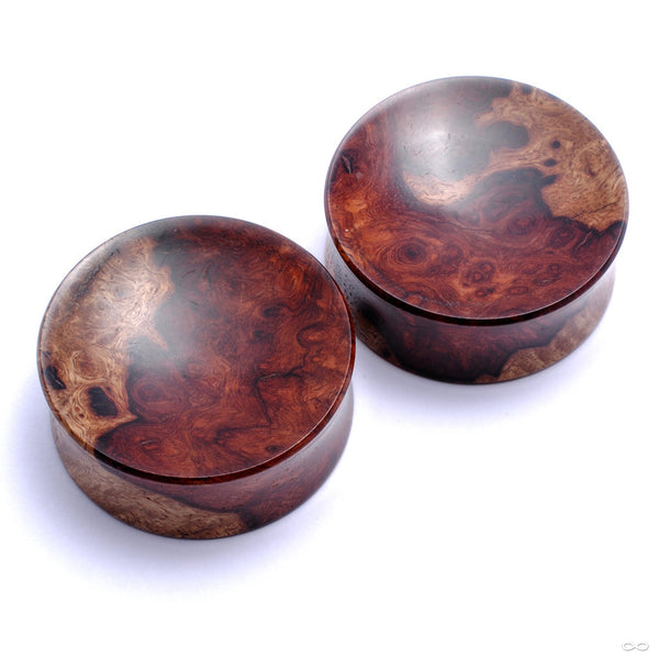 Two-tone Amboyna Plugs from Bishop Organics Solid Plug