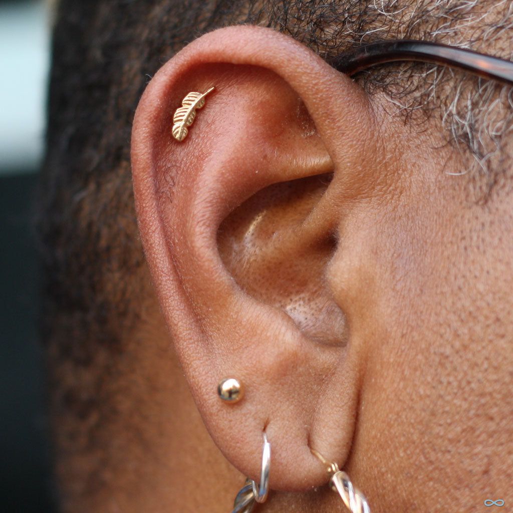 Ear piercing faq outer helix piercing by andru pooptronica Choice Image