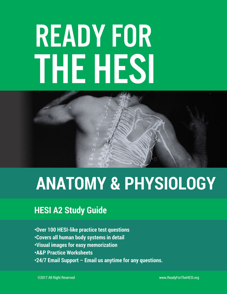 2019 HESI A2 Anatomy and Physiology E-Study Guide: Download and study right  away!