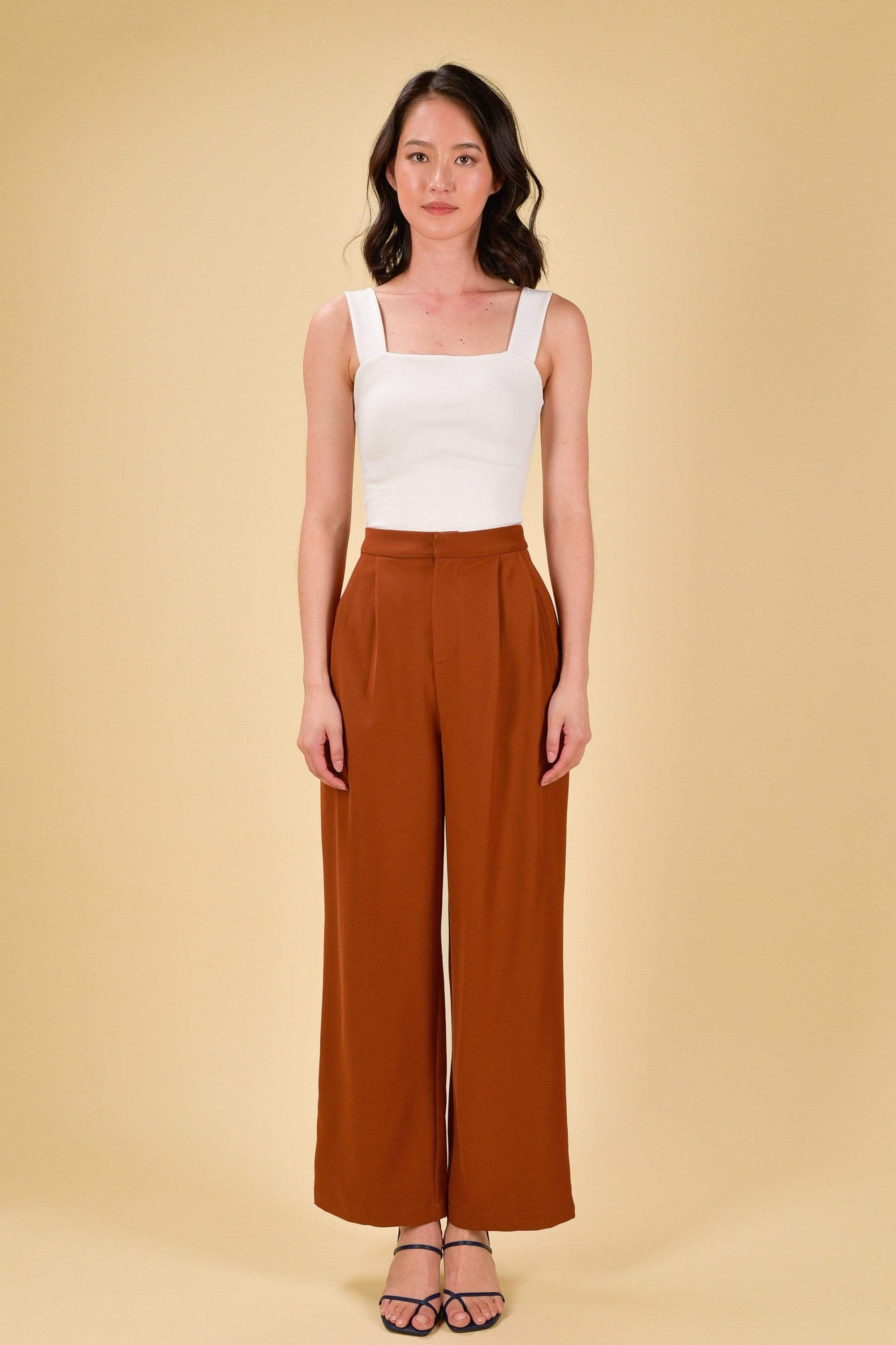 AMALYN PLEAT PANTS IN BRICK