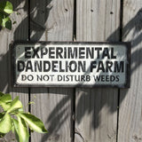 Experimental Dandelion Farm Sign