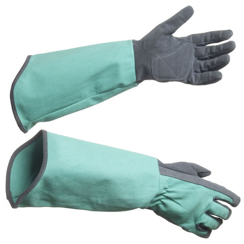 Rose Picker Garden Gloves (NB)