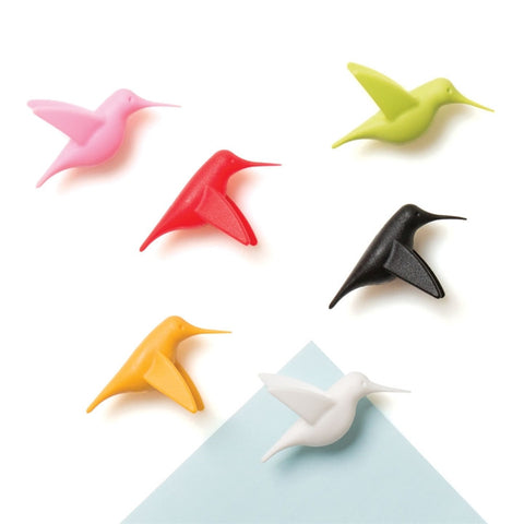 Hummingbird Fridge Magnets (NB)
