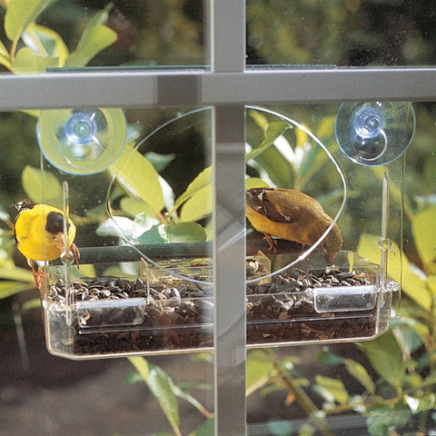 Window Mounted Bird Feeder