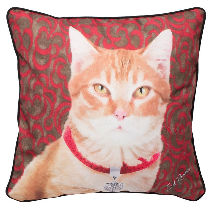 Orange Tabby Cat Pillow