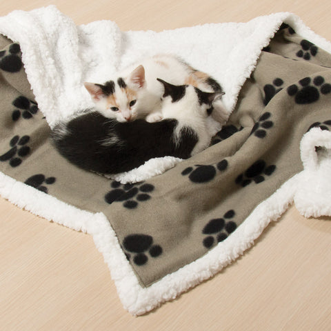Paw Prints Pet Blanket