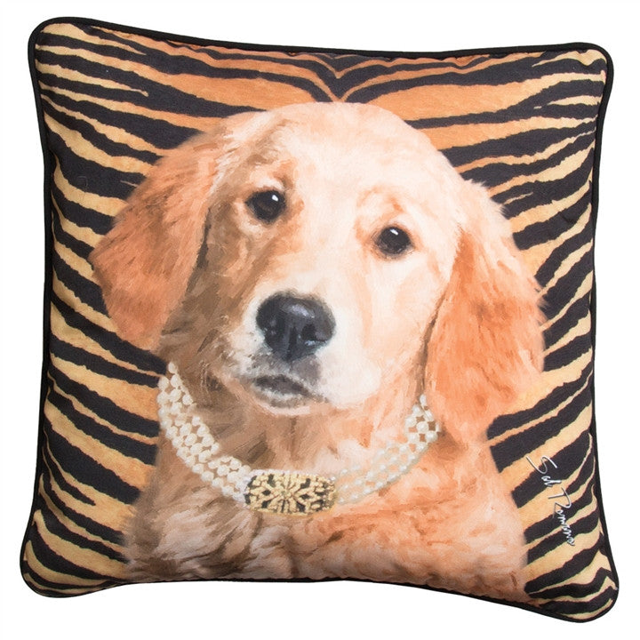 Willow the Golden Pillow at Linda Anderson