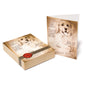 Leonardo's Portfolio Dog Notecards Set