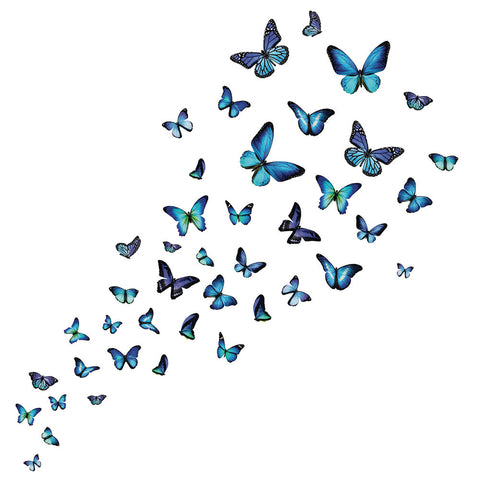 Big Blue Butterfly Wall Decals