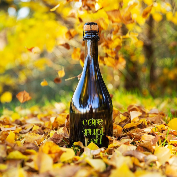 Core-rupted Dry Cider (6 pack) 750ml