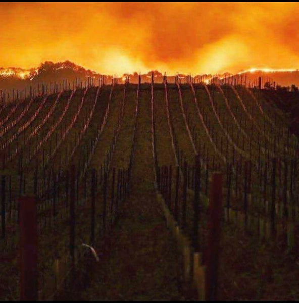 Napa Valley Fire