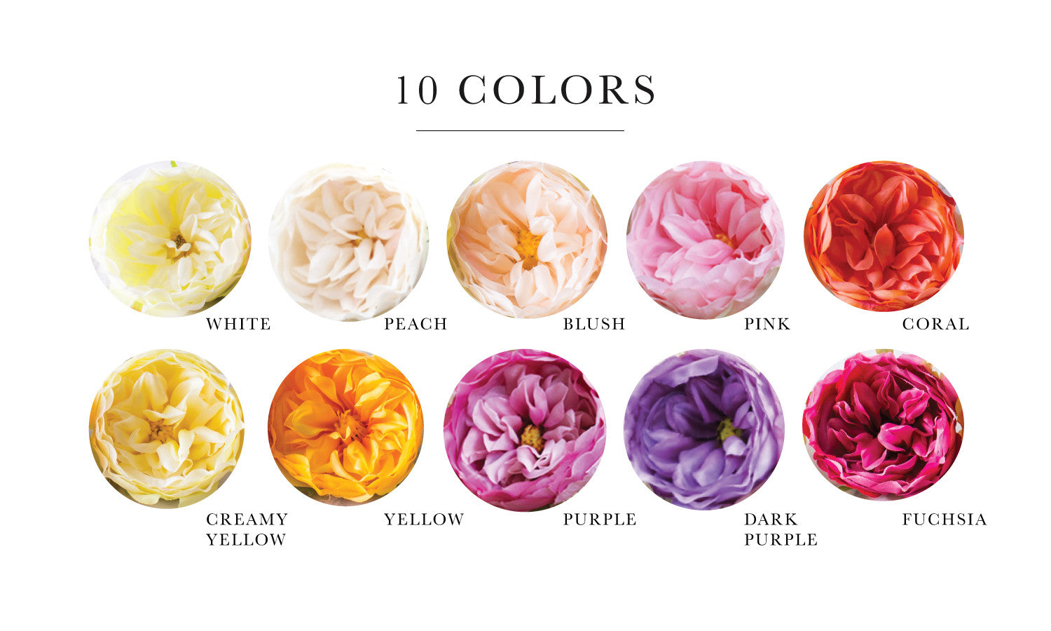 20pcs Garden Roses Silk Flower Heads Silk Flowers For DIY   10 Colors  Available
