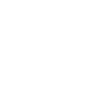 instagram media button