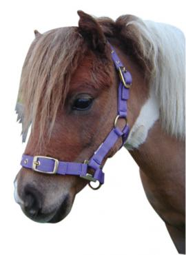 Nylon Miniature Headstall
