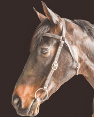 Drovers Saddlery Made Barcoo Bridle