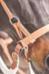 Drovers Saddlery Made Leather Side Pull
