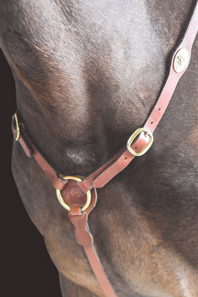 Drovers Saddlery Made Stockmans Breastplate with Campdraft Concho