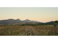 Trail, Flinders Ranges, South Australia