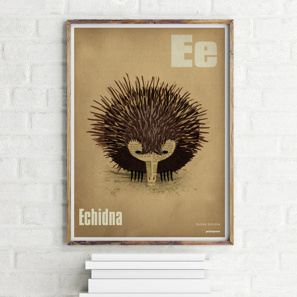 Echidna Poster - printspace