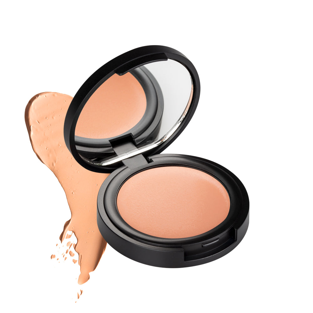 Natural Correct & Conceal in 2 colors 3g