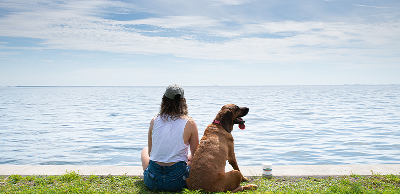 4 Ways Dogs Make Your Life Better