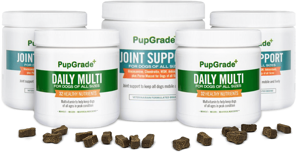 Lineup of PupGrade products