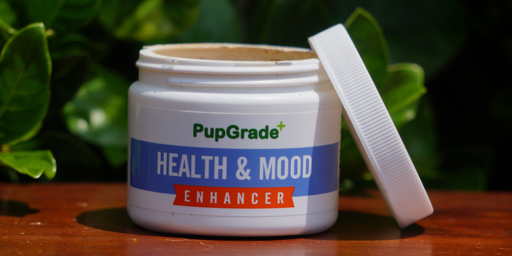 health and mood enhancer from pupgrade to help with dog bath time