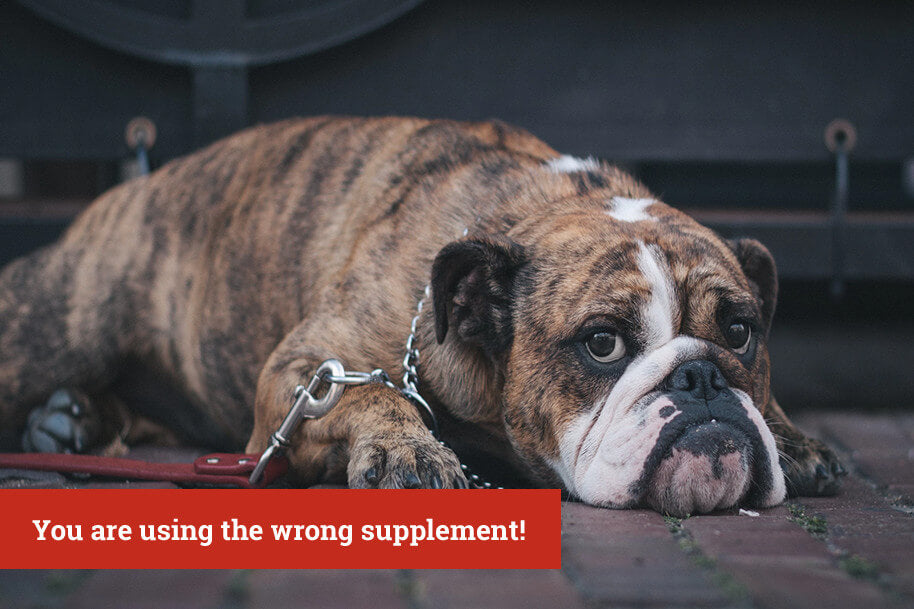 Wrong Supplements