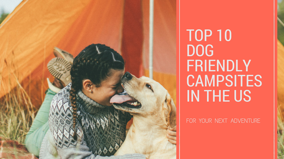 Top 10 Dog Friendly Campsites In The US