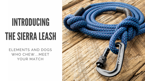 Introducing the Sierra Leash from Embark Pets