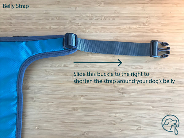 How to adjust dog harness