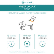 Urban Dog Collar - Azure