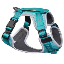 Sports Dog Harness