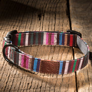Urban Dog Collar - Striped
