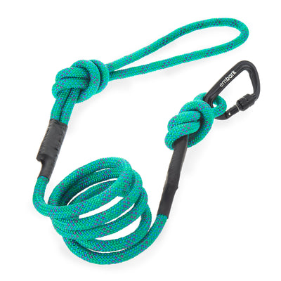 Sierra Climbing Rope and Carabiner Dog Leash