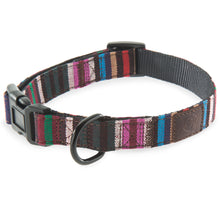 Urban Dog Collar