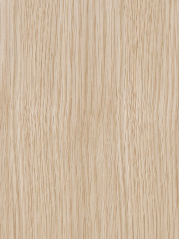 White Quarter Sawn European Oak