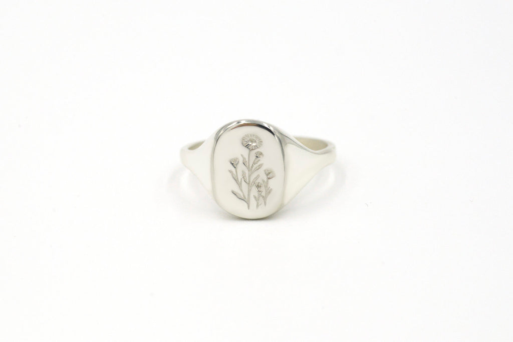 Botanical Collection - Daisy signet