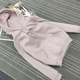 Style female autumn winter casual letter print new pullovers women hoodies floral o-neck Full sweatshirts