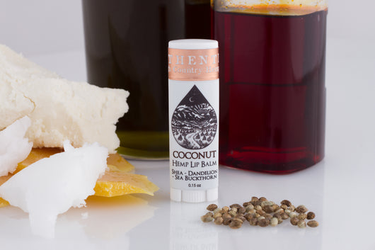 Nourishing Lip Balm - Coconut