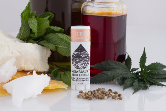 Nourishing Lip Balm - Spearmint